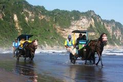 Cavallo alla spiaggia Fotografia Stock