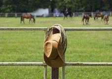Cavallo americano del ranch Fotografia Stock Libera da Diritti