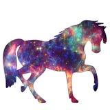 Cavallo animale della galassia dello spazio immagine stock libera da diritti