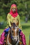 Cavallo arabo Immagini Stock