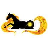 Cavallo-Autunno Fotografie Stock