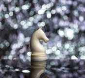 Cavallo bianco di scacchi su sfuocatura Fotografie Stock