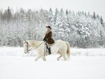 Cavallo bianco e donna di guida fotografia stock