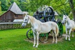 Cavallo bianco in una parte anteriore di un cottage tradizionale Immagini Stock Libere da Diritti