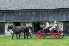 Cavallo, carrozzino, agricoltore, guida della gente Immagine Stock Libera da Diritti