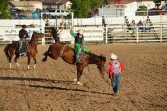 A cavallo cavaliere Immagini Stock