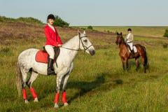 A cavallo cavalieri Due donne attraenti montano i cavalli su un prato verde Immagini Stock