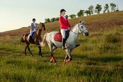 A cavallo cavalieri Due donne attraenti montano i cavalli su un prato verde Immagine Stock Libera da Diritti