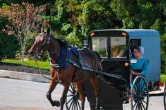 Cavallo che tira il carrozzino di Amish nella contea di Lancaster immagine stock libera da diritti