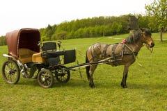 Cavallo con il carrello Immagine Stock Libera da Diritti