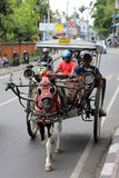 Cavallo con il trasporto a Bali Fotografia Stock