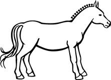 Cavallo con la treccia del bottone Fotografie Stock