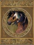 Cavallo con le piume Fotografia Stock