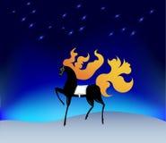 Cavallo con una criniera ardente sotto le stelle Fotografie Stock Libere da Diritti