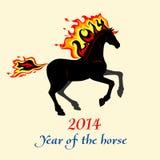 Cavallo con una criniera di ardentemente Fotografie Stock Libere da Diritti