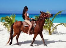 A cavallo in Cozumel Immagine Stock