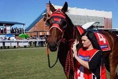 Cavallo da corsa ed operatore Fotografie Stock