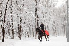 Cavallo da equitazione della giovane donna su un prato di inverno Fotografia Stock