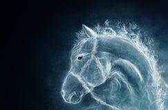 Cavallo da un fumo Fotografia Stock Libera da Diritti