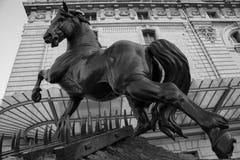 Cavallo davanti al museo di Orsay a Parigi fotografie stock