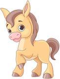 Cavallo del bambino illustrazione di stock