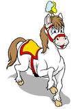 Cavallo del circo Fotografia Stock