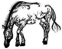 Cavallo del fogliame Fotografie Stock Libere da Diritti