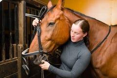 Cavallo del freno Fotografia Stock