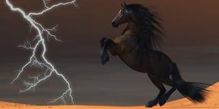 Cavallo del fulmine del deserto Fotografia Stock Libera da Diritti