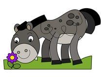 Cavallo del fumetto Fotografie Stock
