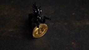 Cavallo del nero della moneta di Bitcoin stock footage