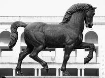 Cavallo del ` s di Leonardo Fotografia Stock