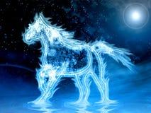 Cavallo dell'acqua Fotografia Stock