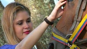 Cavallo dell'adulto di coccole della donna archivi video