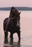 Cavallo della castagna e la ragazza in acqua Immagine Stock Libera da Diritti