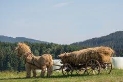 Cavallo della paglia farcito con il vagone della paglia Fotografie Stock Libere da Diritti