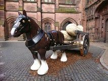 Cavallo della porcellana fotografie stock libere da diritti