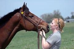 Cavallo della sorgente fotografia stock