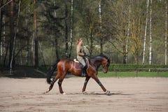 Cavallo di baia biondo di guida della donna Immagine Stock