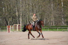 Cavallo di baia biondo di guida della donna Fotografie Stock Libere da Diritti
