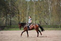 Cavallo di baia biondo di guida della donna Fotografia Stock Libera da Diritti