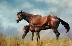 Cavallo di baia con il puledro di professione d'infermiera Digita ha strutturato il materiale illustrativo Fotografia Stock Libera da Diritti