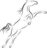 Cavallo di salto Immagini Stock Libere da Diritti