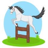 Cavallo di salto Fotografia Stock