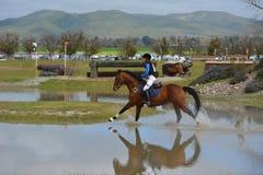 Cavallo di salto dei fiumi del ranch di concorso completo gemellato del paese trasversale Fotografie Stock Libere da Diritti