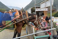 Cavallo di trasporto, Kyoto, Giappone Fotografie Stock