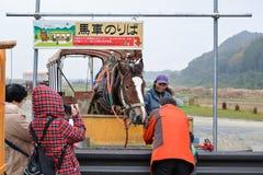 Cavallo di trasporto, Kyoto, Giappone Fotografie Stock Libere da Diritti