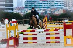 Cavallo di volo in una concorrenza Immagini Stock Libere da Diritti
