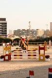 Cavallo di volo in una concorrenza con luce stupefacente Immagini Stock Libere da Diritti