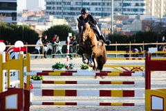Cavallo di volo in una concorrenza con luce stupefacente Fotografia Stock Libera da Diritti